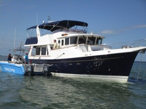 2005 Selene Trawler 59' Grounded